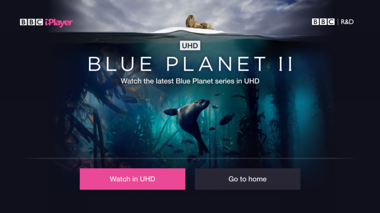 A screenshot showing Blue Planet on offer within the BBC iPlayer in UHD.