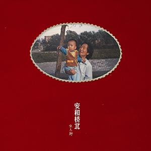 showimage3575 - 新品 | 暖男魅力无法挡!Naim ND 555网络串流播放器