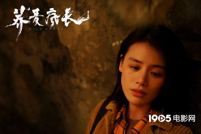 《荞麦疯长》发预告 马思纯钟楚曦黄景瑜首次合作